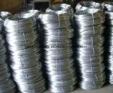 Rolls 중국 공급자에 있는 최고 가격 또는 선거인 의무 철사를 가진 직류 전기를 통한 철 철사