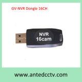16CH IP-камера USB V8.5 навигатор Geovision Gv NVR защитный ключ