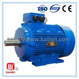 Motore elettrico a tre fasi del ghisa (CDF/SDF)