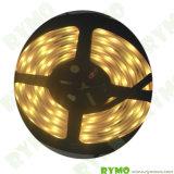 3528 теплый белый светодиодный индикатор образец свободной от полосы доступно. (RM-01-352860D-8мм-12V)