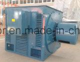 Special asíncrono trifásico de Yrq de la serie del motor para las minas