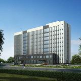 Paroi de rideau en verre stratifié tempéré pour structure Bâtiment de bureaux