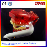 Luz oral dental del producto dental LED de China
