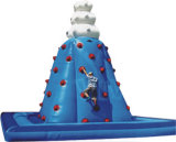 Château sautant combiné gonflable d'intérieur ou extérieur étonnant