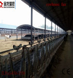 Geflügelc$gerät-cowhouse-Absaugventilator (JL-44 '')