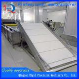 Wasmachine van het Fruit van de wasmachine de Plantaardige (Facultatieve de Generator van het Ozon)