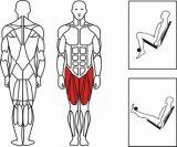 جسم قوّيّة تجاريّة [جم] قوة [مشننت] ساق إمتداد ([إكسه03])