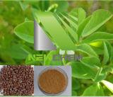 100% natürlicher Sicklefruit Bockshornklee-Auszug