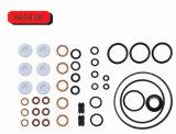 Os kits de reparação da bomba de combustível automática 2417 010 022 (800717)