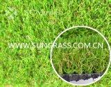W Gras van het Landschap van de Vorm het Kunstmatige (sunq-HY00146)