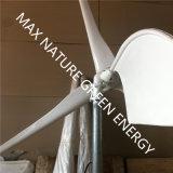 1000W de Turbine van de wind voor de Generatie van Elektriciteit door Wind