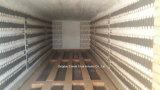 De Oven van de Weerstand van de Hoogste Kwaliteit van China (CE/ISO9001)