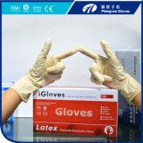 Fornitore a gettare della Malesia dei guanti dell'esame del lattice