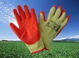 Werkende Handschoenen