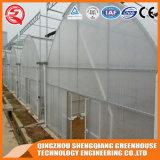 Парник пленки Po Одиночн-Пяди земледелия Китая с стальной рамкой