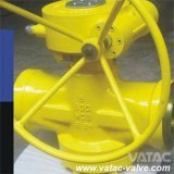 Form oder Forged Edelstahl Lubricated u. Sleeve Plug Valve