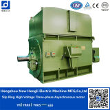 3000V Variable Speed AC Motor voor Plastic Equipment