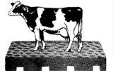 Estera barata del caucho de la vaca de la parada del caballo de la alta calidad