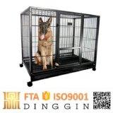 Grande cage de chien Tube carré