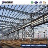 Diseño profesional Estructura metálica prefabricada Estructura de acero para construcción de almacén