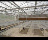 Moderne Landbouw die het Beweegbare Zaadbed van de Serre van de Bank Rooling planten