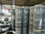 Het sterke Corrosiebestendige Gebruik van de Omheining van de Boerderij voor Vee, het Landbouwbedrijf van Schapen