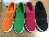 Zapato perezoso colorido del nuevo estilo de 2016 veranos