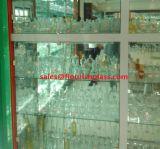 Gemaakte mens/de Machine Gemaakte Kruiken van het Glas