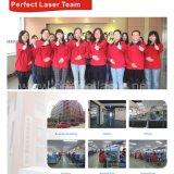 中国の彫版機械の中の熱い販売3Dのクリスタルグラスレーザー