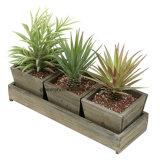 Madera de estilo rústico de la plaza de la sembradora de suculentas ollas de jardín o la decoración del hogar