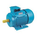 Y2 de hierro fundido de la serie del motor eléctrico trifásico (IE1/IE2/IE3 estándar) para el compresor de aire