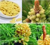 100% de pollen de pin bio naturel (1250Mesh) Riche plus de 200 sortes de nutriments bioactifsPure la nutrition naturelle / Trésor de drogue, nourriture santé très rare et précieuse