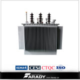 Электрический трехфазный трансформатор масла трансформатора 1000V