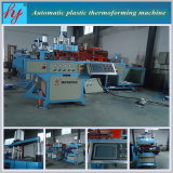 Hy-540760 Plastic Thermoforming Machine con Cutting Stacking