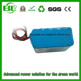 Server 휴대용 Rechargeable Li 이온 Battery 12V 15ah BMS Protection