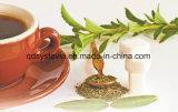자연적인 감미료 유기 스테비아 잎 추출 Rebaudiosidea