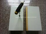 Panel de habitación fría con cerradura de la leva y el certificado del CE
