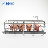 Гальванизированное оборудование беременность для свиньи