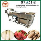 Arruela da escova de vegetais raiz vegetal máquina de lavar para venda