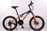 20pol estrutura de suspensão de aço MTB Bike, travão de disco, Shimano 21velocidade