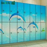 Phenolic Waterdichte Kast van de Kleedkamer van het Zwembad