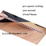 Xxxx panneau PVC plafond du moule