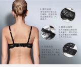 Alta calidad respirable de las señoras del corsé del cordón del sujetador y de Panty