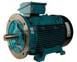 Productos eléctricos y mecánicos de inspección de equipos de inspección/transformador/Motor/generador eléctrico de la Inspección de Servicios de inspección