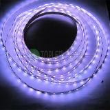 Luz de tira flexível do diodo emissor de luz do RGB com alta qualidade SMD5050 60LEDs/M 12V, C.C. 24V
