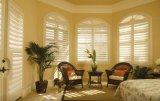 2017 innere Fenster-Blendenverschlüsse mit Neigung-Stab-Plantage-Blendenverschluß