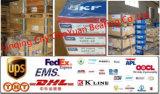 Venda a quente famosa marca SKF FAG INA Timken Rolamentos (30310)