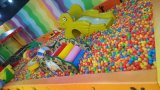 Fabbrica professionale del parco di divertimenti dell'interno del campo da giuoco (TY-150821)