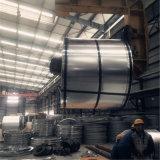 SPCC-SD DC01 laminato a freddo la bobina d'acciaio (lamiera sottile)