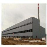 Helle Stahlkonstruktion für Werkstatt/Lager mit SGS-Bescheinigung